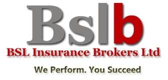 BSLB Logo_Rich